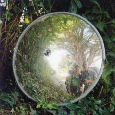Ierse spiegel