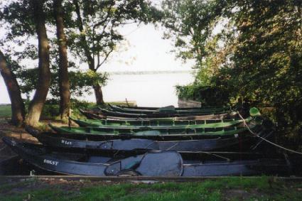 punterhaven